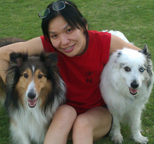 Sandra Chang-Adair with her sheltie, Ripley and her aussie, Freckles